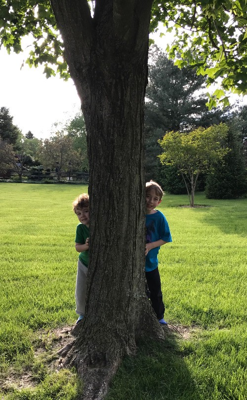 Two children trying to hide behind a tree