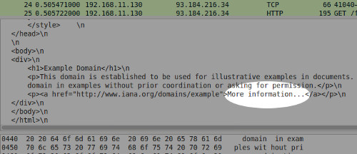 Wireshark screenshot showing plain text from example.com