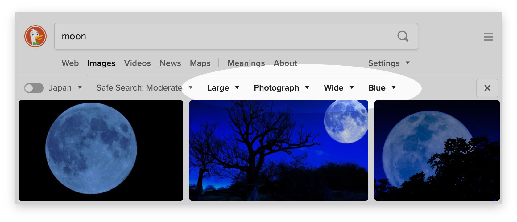 Screenshot showing the image filters in DuckDuckGo Search.